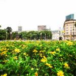 Argentina Diaries: Exploring Buenos Aires