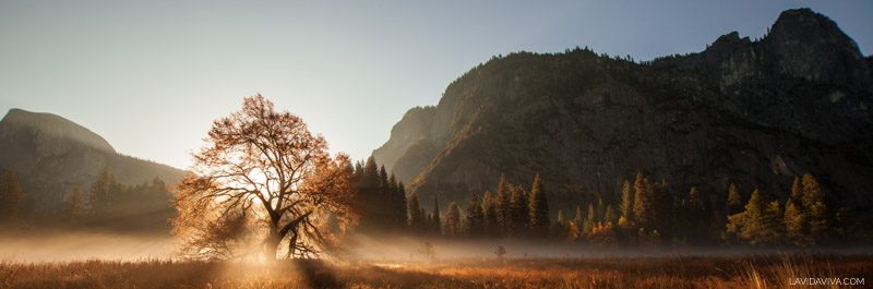 Yosemite National Park is a must visit if you're in California! Check out some beautiful photos to inspire your next trip!