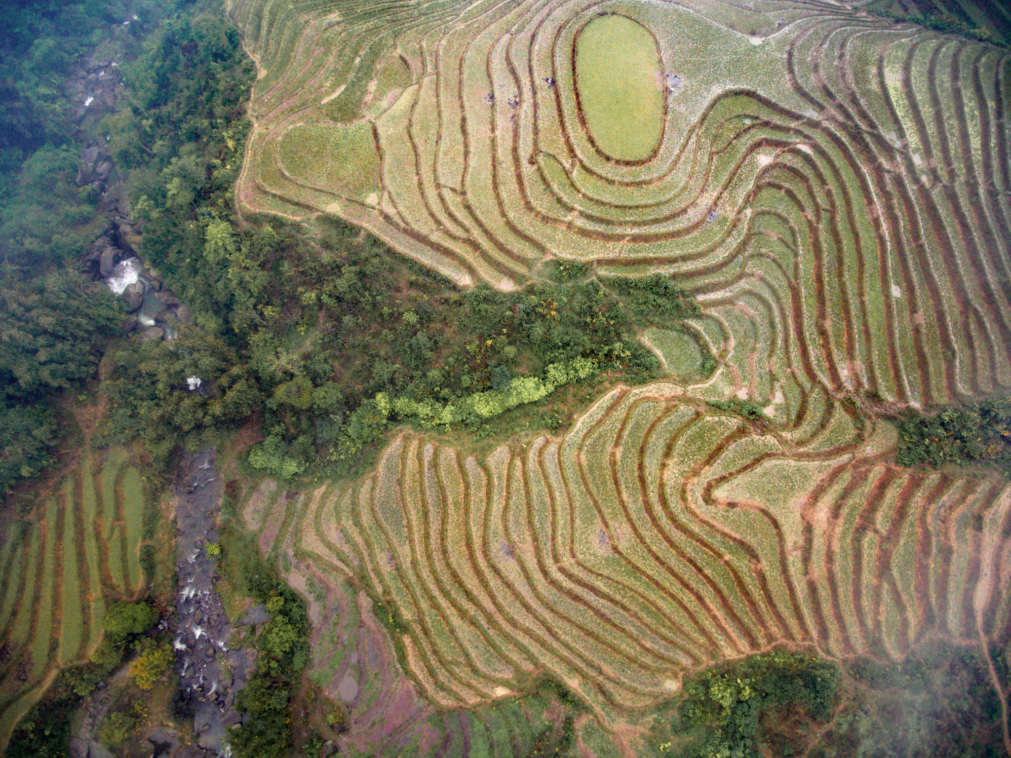 Drone photography over the Sapa rice fields in Vietnam