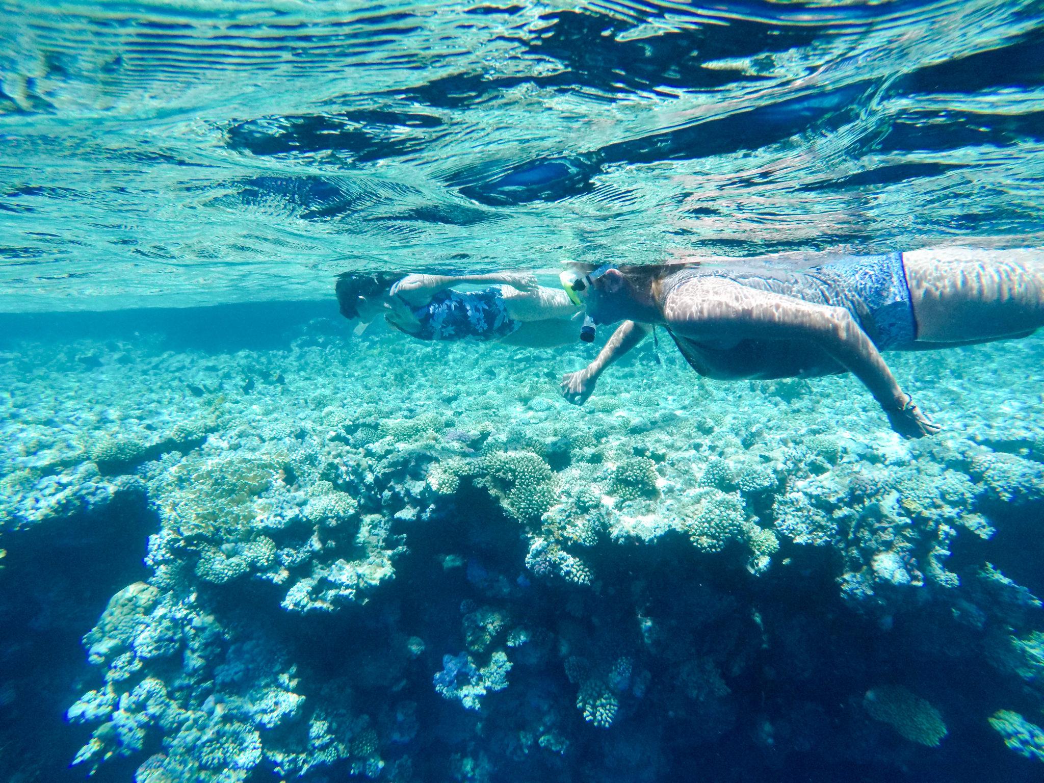 people snorkeling in Dahab bluehole