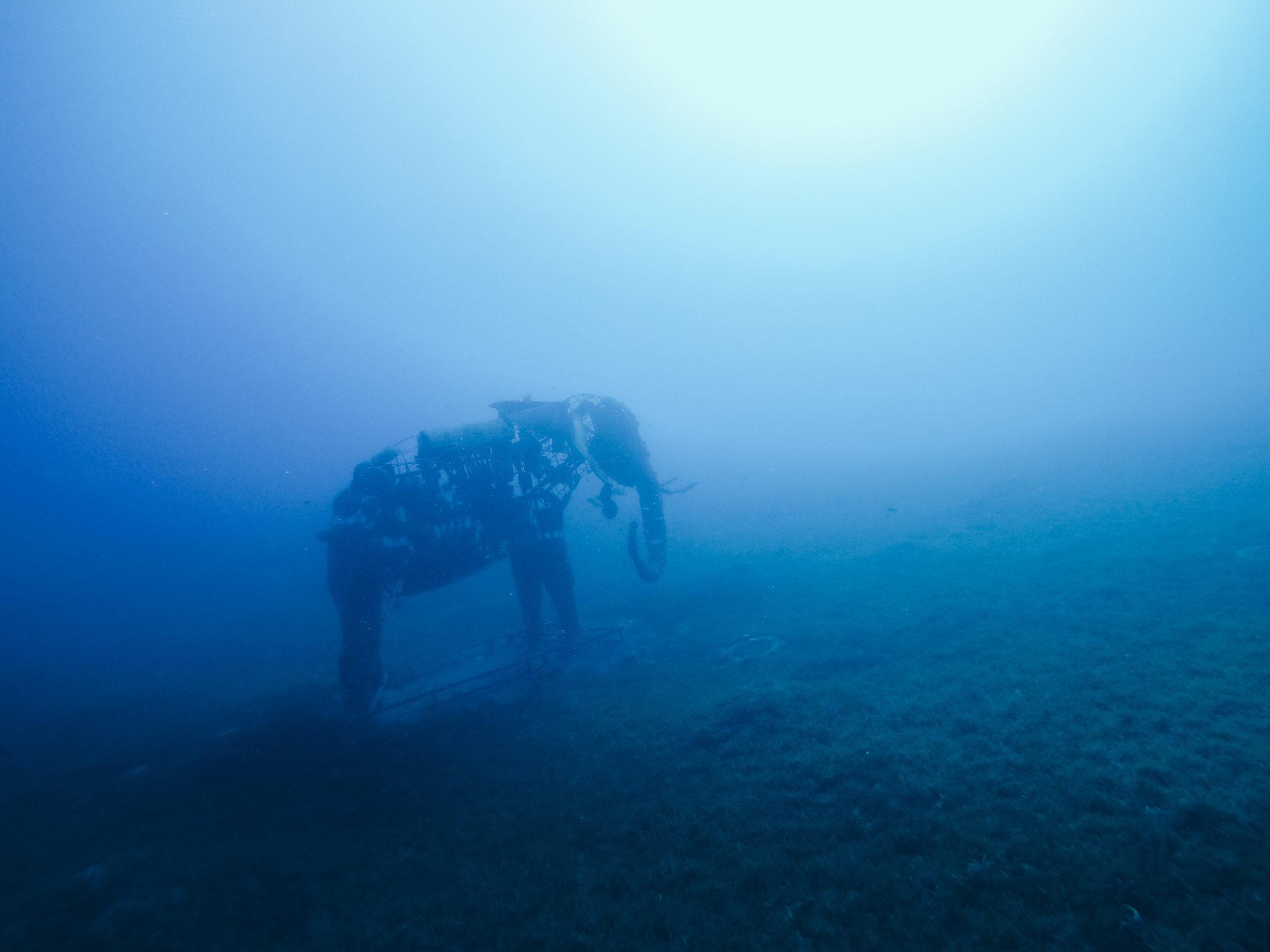 elephant statue underwater photography